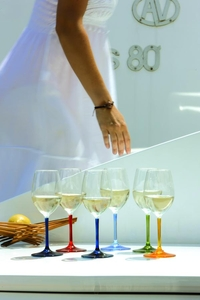 Party wine glasses multicolour 6-pack