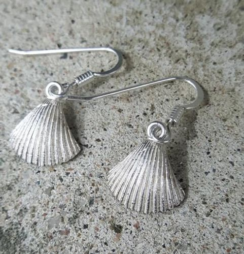 Earrings small clamshell