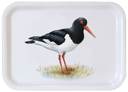 Tray Oyster Catcher 27 x 20 cm